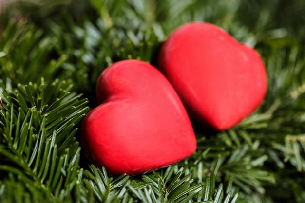 Twee rode harten op achtergrond van dennentakken.