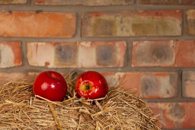 Twee rode rijpe appels op het hooi tegen een bakstenen muur. hoge kwaliteit foto