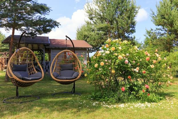Twee rotan cocon rieten stoelen in de buurt van bloeiende rozen in de achtertuin in de zomer, zonnige dag