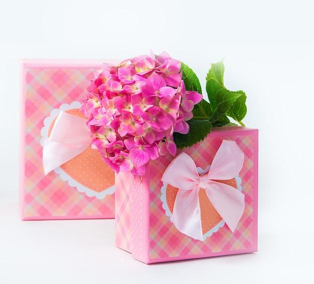 Twee roze geschenkdoos met hortensiabloem. geïsoleerd op witte achtergrond