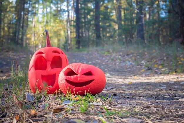 Twee roze halloween-pompoenen in het herfstbos staan op een landweg