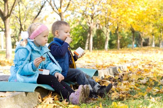 Twee schattige kleine blonde kinderen, zittend op een klein stuk tapijt op de grond te midden van de kleurrijke gevallen bladeren