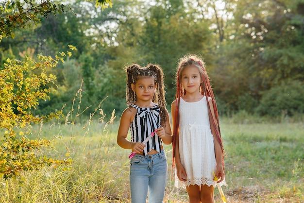 Twee schattige meisjes met staartjes spelen in het park zeepbellen opblazen.