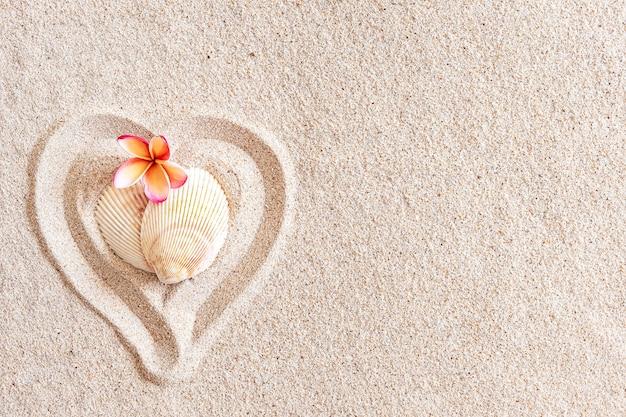 Twee schelpen in de vorm van een hart op een gladde zandstrand met kopie ruimte