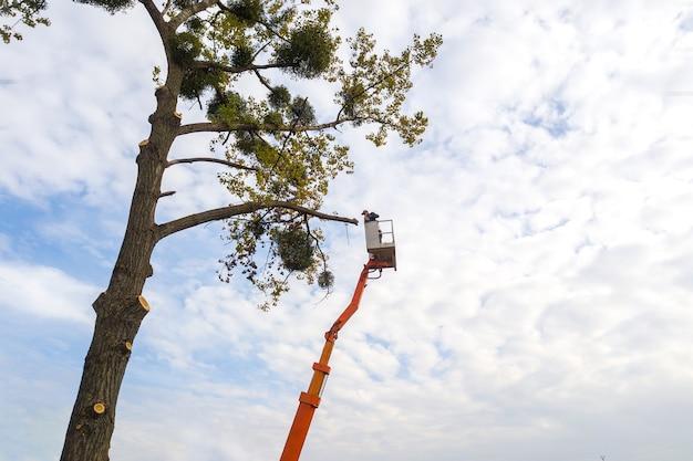 Twee servicemedewerkers die grote boomtakken kappen met een kettingzaag vanaf het kraanplatform van de hoge stoeltjeslift. ontbossing en tuinieren concept.