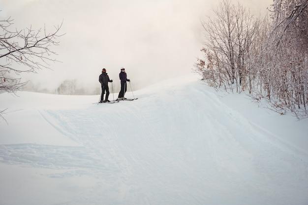 Twee skiërs skiën in besneeuwde alpen