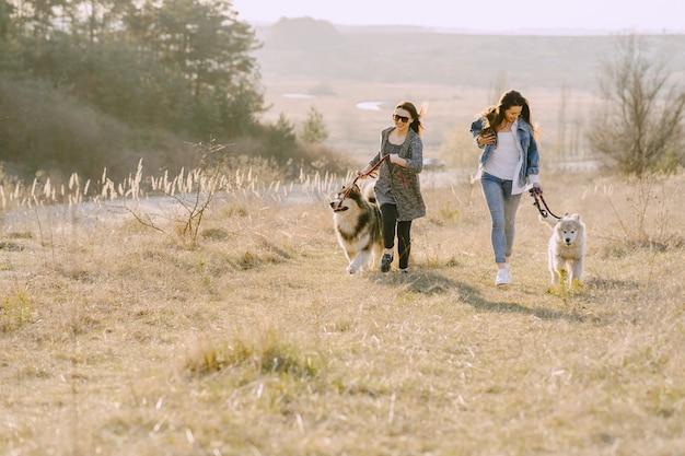 Twee stijlvolle meisjes in een zonnig veld met honden