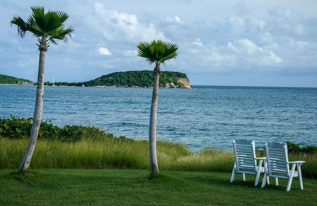 Twee stoelen met uitzicht op zee naast palmbomen in puerto rico