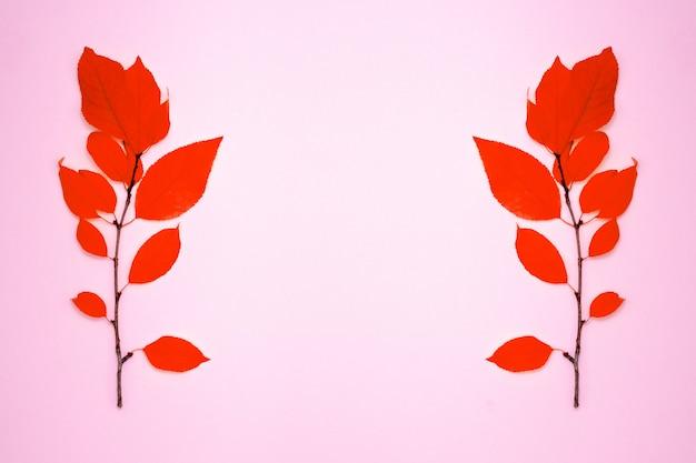 Twee takken met rode bladeren, pruim, op een lichtrose achtergrond
