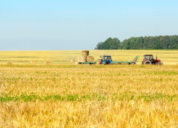 Twee tractoren, die worden gebruikt om gebonden stapels stro te verzamelen na het oogsten van granen - tarwe of rogge. in de zomer met een blauwe lucht in het oppervlak.