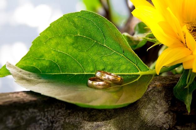 Twee trouwringen liggen op een grote zonnebloem. ringen zijn goud.