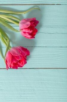Twee tulpen op blauwe munt houten achtergrond