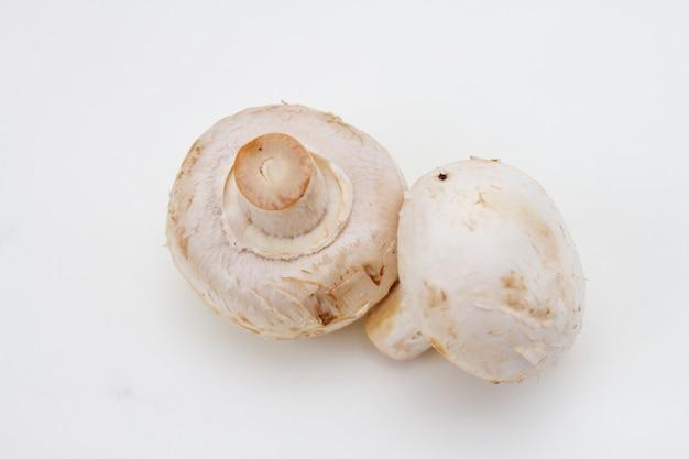 Twee verse champignonpaddestoel op witte achtergrond. bovenaanzicht.