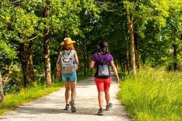 Twee vrienden wandelen langs het prachtige pad tussen bomen in de urdaibai-moerassen, een biosfeerreservaat van bizkaia naast mundaka. baskenland