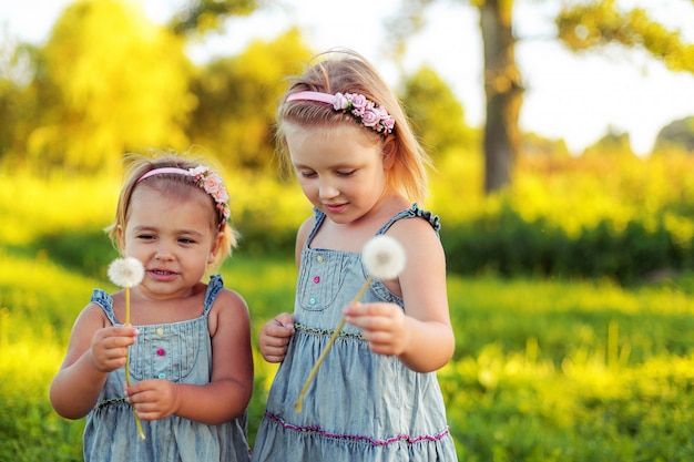 Twee vrolijke kaukasische meisjes met paardebloem in zomer park.