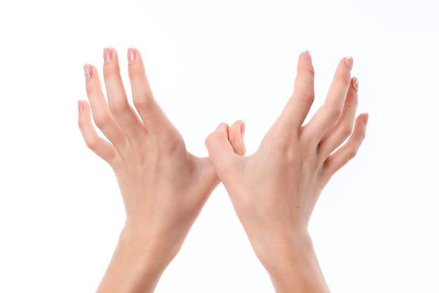 Twee vrouwelijke handen naar voren gestrekt met opgeheven opwaartse en achterwaartse palmen close-up