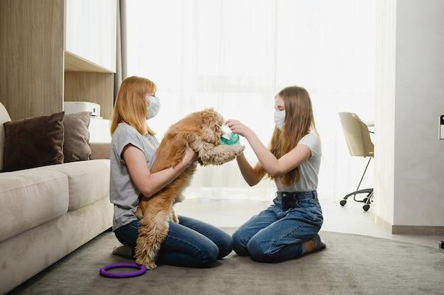 Twee vrouwtjes thuis tijdens de isolatieperiode proberen het lieve huisdier te beschermen tegen virussen, coronavirus en de muilkorf van de hond