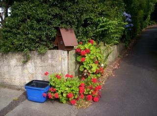 Tweed recycling brievenbus en geraniums