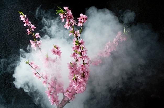 Twijg van kersenbloesems in rook en water druppels op zwart