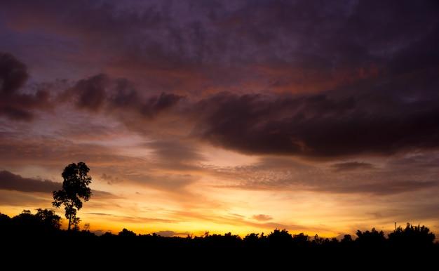 Twilight sky en rainny clound met boom. hoog geluidsniveau. nachtelijke hemel met clound.