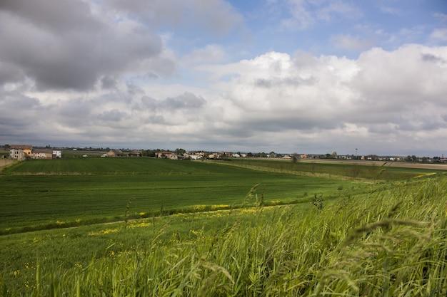 Typisch italiaans platteland. landelijk gebied van noord-italië, met bloemrijke teeltgebieden in een schilderachtig landschap en impact.