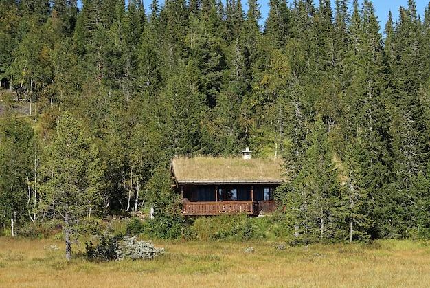 Typisch noors landelijk huisje met adembenemend landschap en prachtig groen in noorwegen