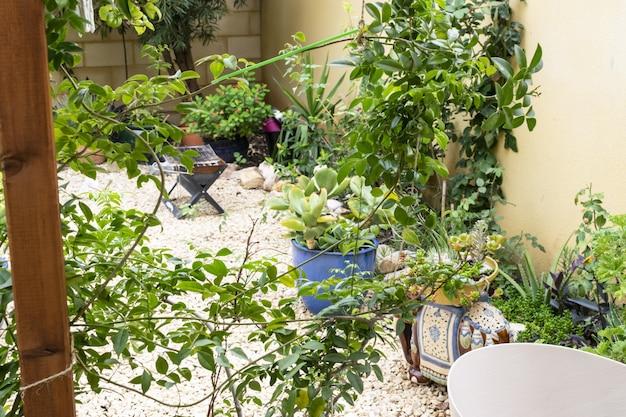 Typische tuin van het oostelijke deel van de mediterrane tuin van het iberisch schiereiland