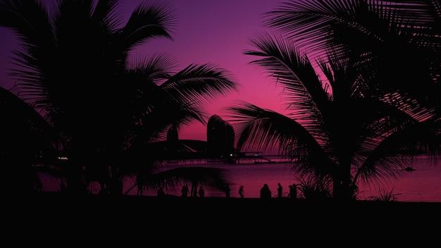 Uiterst mooie zonsondergang onder de kokospalmen op het strand van china. silhouet van mensen - toeristen genieten van tijd in de zomervakantie - reizen, vakantie
