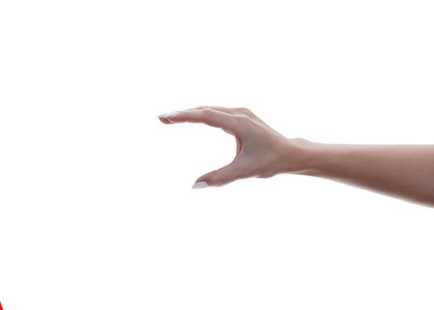 Uitgestrekte vrouwenhand die iets met vijf vingers houdt.