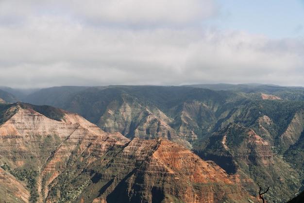 Uitkijkend uitzicht op waimea canyon state park in de verenigde staten