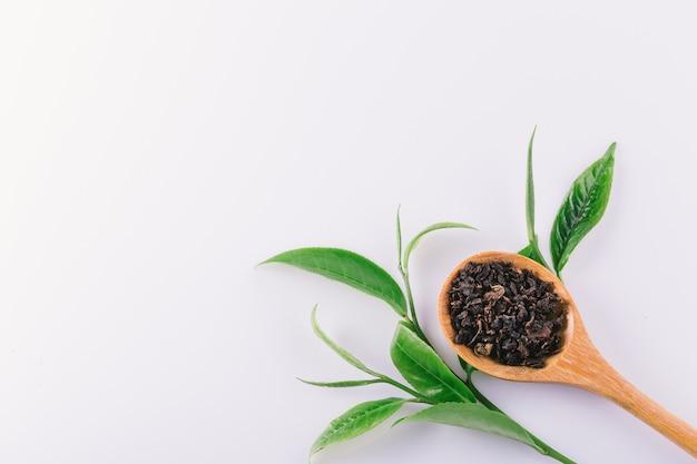 Uitstekend groen theeblaadje dat op witte achtergrond wordt geïsoleerd