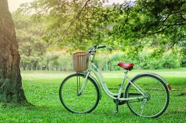 Uitstekende fiets die op het groene gras in het openbare park wordt geparkeerd.