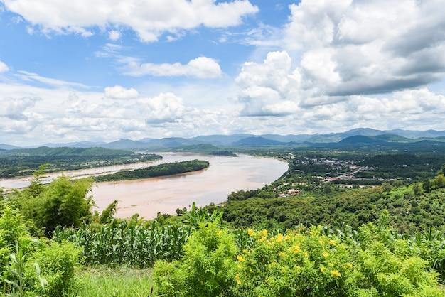 Uitzicht op bergplant en gele bloemen met rivier en blauwe hemelachtergrond