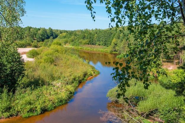 Uitzicht op bos rivier over de zomer bossen bovenaanzicht bos boom ecosysteem