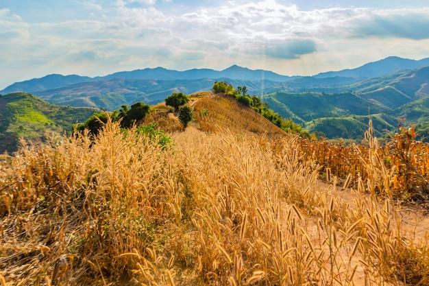 Uitzicht op de bergen in het gebied van de provincie nan, thailand