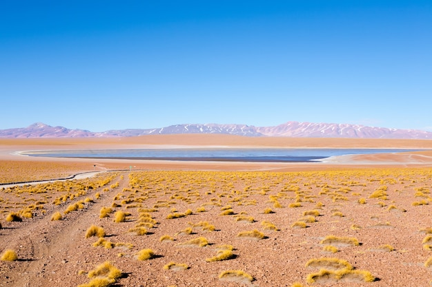 Uitzicht op de boliviaanse lagune, bolivia