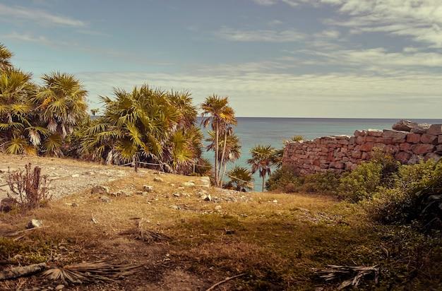 Uitzicht op de caribische zee gefilterd door een tuin met palmbomen en een stenen muur.