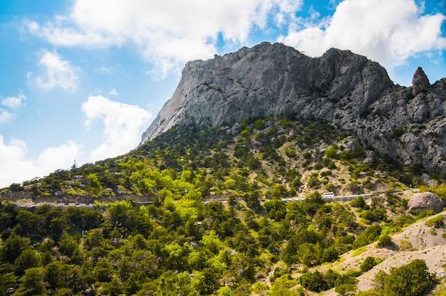 Uitzicht op de enorme rotswanden en de groene vallei bedekt met bos