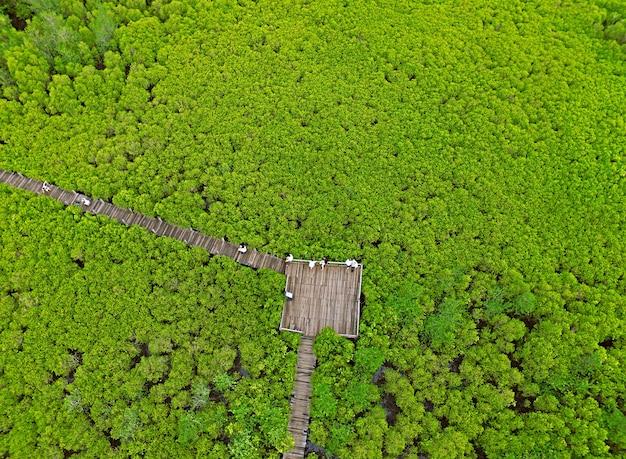 Uitzicht op de houten promenade tussen het aangespoorde mangrovebos in de provincie rayong, thailand door drone