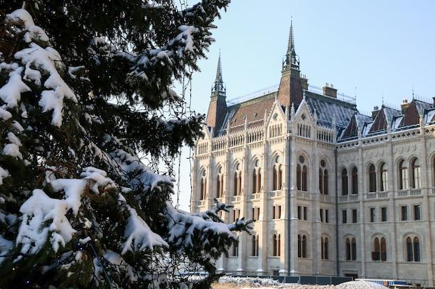 Uitzicht op de nieuwjaarsboom in het parlement in boedapest