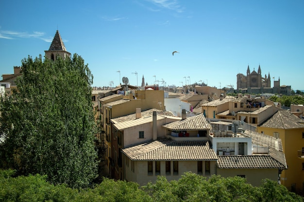 Uitzicht op de oude huizen en gebouwen van palma de mallorca