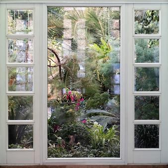 Uitzicht op de raamkas met diverse bloemen, palmen en andere tropische planten in zonnige dag.