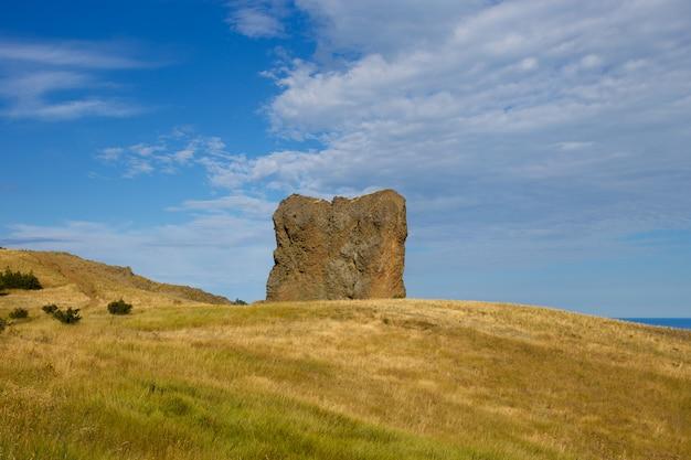 Uitzicht op de rots in het veld