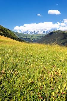 Uitzicht op de savooise alpen-europa