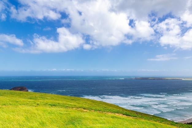 Uitzicht op de stille oceaan in otago, nieuw-zeeland