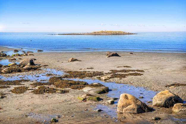 Uitzicht op de witte zee op de solovetsky-eilanden, een zeemeeuw op de golven en stenen op de kust in de stralen van de herfstzon