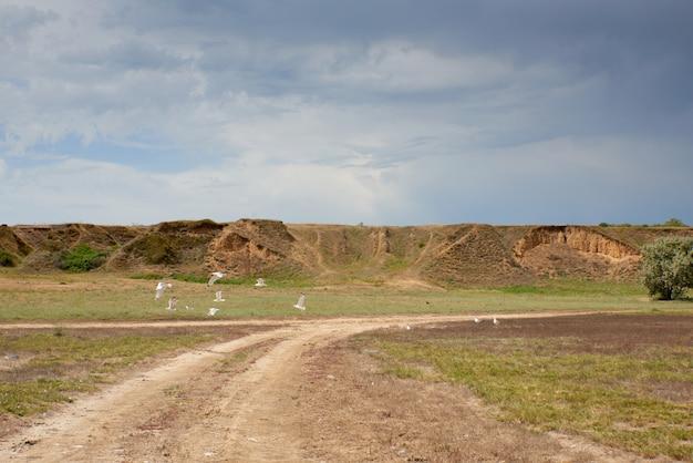 Uitzicht op de zandhellingen bij de monding van de dnjepr-bug