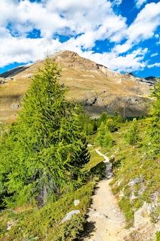 Uitzicht op de zwitserse alpen bij zermatt