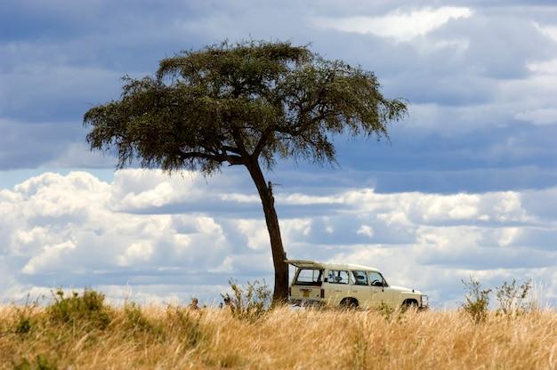 Uitzicht op een 4x4 in het midden van een vlakte in het natuurreservaat van masai mara.