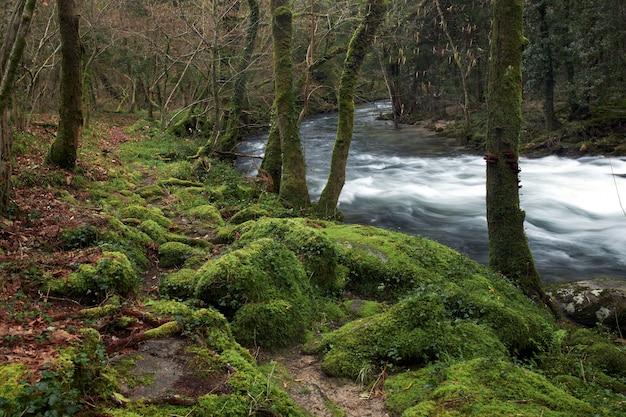 Uitzicht op een deel van de rivier umia in galicië